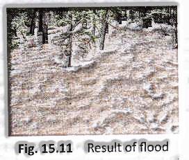 Result of flood